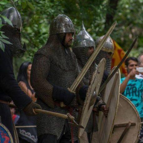 Mercenary Drujina Baradj
